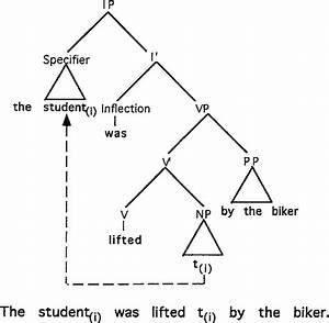 Tree Diagram Illustrating Np
