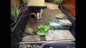 New Tortoise Table  For Russian Tortoise