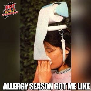 Allergy Meme - jokes about being sick kappit