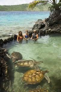 Coral World St. Thomas