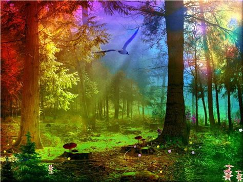 Beautiful Magical Wallpaper by Colorful Nature Wallpapers Wallpaper Cave