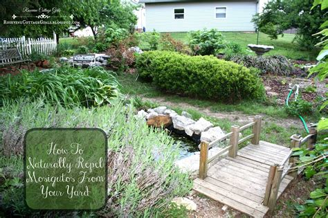 repel mosquitoes in yard rosevine cottage girls how to naturally repel mosquitos from your yard