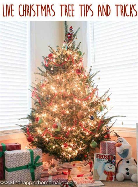 christmas tree tips tricks  happier homemaker