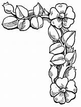Clip Floral Border Corner Flower Cliparts Borders Flowers Clipart Coloring Corners Bing Pages Roses Attribution Forget Link Don sketch template
