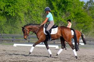 Laine Ashker at The Fork | Eventing Nation - Three-Day ...