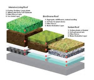 home design alternatives is a sedum roof covering best for a diy green roof