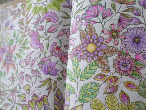 coloriages jardin secret steffy elsass cr 233 a