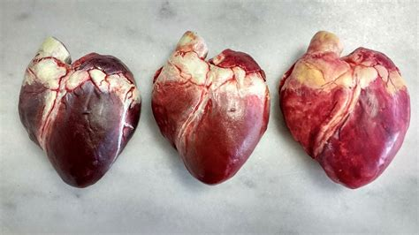 Chocolate Human Heart