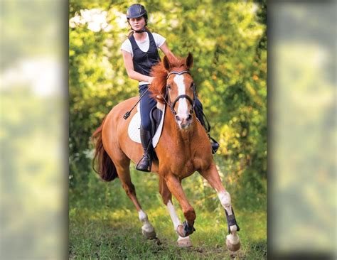 horse riders athletes athlete