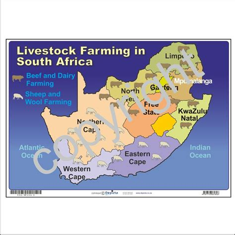 Map Of Livestock Farming In South Africa  Depicta. Comparing Mortgage Loans Anxiety Rash On Neck. Social Media Monitoring Apps. Rehabilitation Centers In Ny. Online Personal Training Certification. Solar Companies In Colorado Sell Homes Fast. Harvard Private Equity Conference. Internet Marketing Career Geico Vs State Farm. St Emma Military Academy Phoenix Water Heater