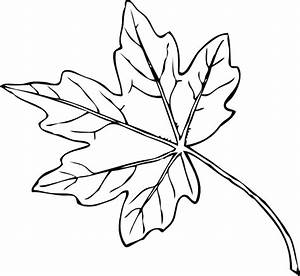 Maple Leaf Clip Art at Clker.com - vector clip art online ...