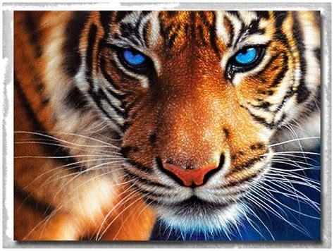 Fondos De Pantalla De Leones Imagenes De Tigres En 3d Simples Imagenes De Tigres