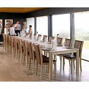 Table de salle a manger avec rallonge 12 personnes for Table salle à manger 12 personnes