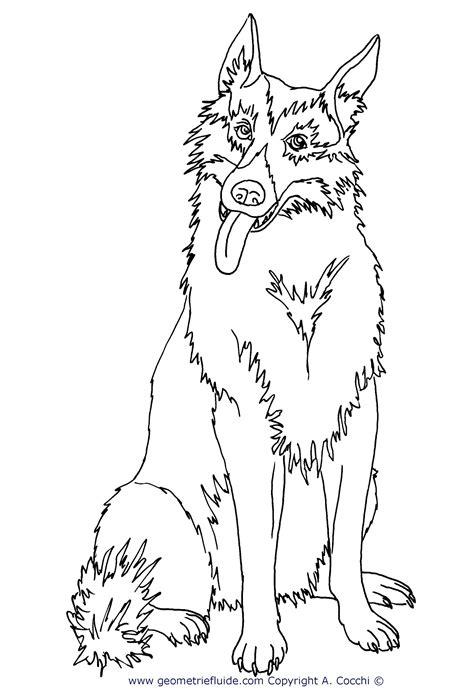 disegni da colorare cuccioli di animali da colorare