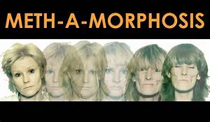 Meth Mouth and Crank Bugs: Meth-a-morphosis