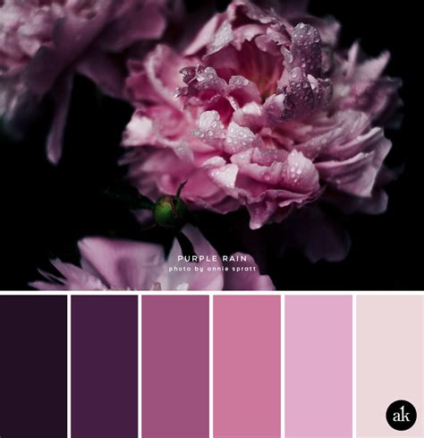 purple and gray bedroom themes a peony inspired color palette akula kreative