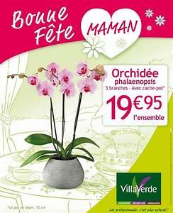 Cache Pot Orchidée : bonne f te maman orchid e phalaenopsis 3 branches avec cache pot aix la garde hyeres port ~ Teatrodelosmanantiales.com Idées de Décoration