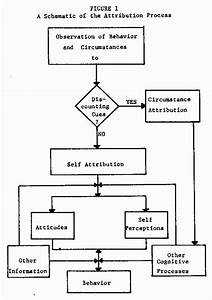 Schematic Diagram Of Research Process