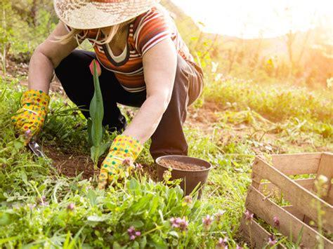 Warum Gartenarbeit Ihrer Gesundheit Gut Tut Liebenswert