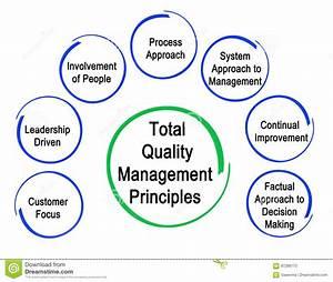 Total Quality Management Principles Stock Illustration