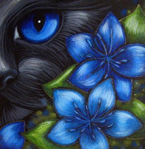 art black cat fennel flowers  exhibit entries