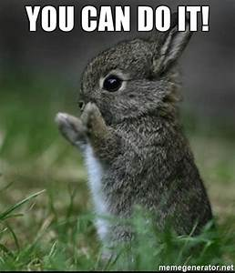 YOU CAN DO IT! - Cute Bunny | Meme Generator