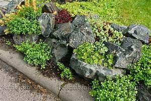 Steingarten Bilder Beispiele : steingarten bilder beispiele steingarten anlegen gestalten ideen bilder beispiele bilder ~ Watch28wear.com Haus und Dekorationen