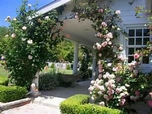 Rosen Für Rosenbogen : gartengestaltung rosen rosenbogen haus eingang rosen ~ Orissabook.com Haus und Dekorationen
