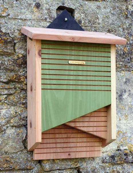 double chamber bat house conservation bat box unique