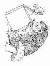 Coloring Hedgehog Mycoloring sketch template