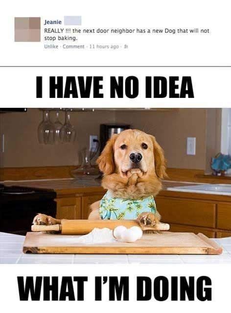 Dog Cooking Meme - funny cooking memes image memes at relatably com