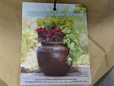 Mullally Rainforest Ceramic Planter