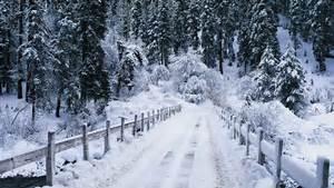 Snow Falling Wallpaper | 2017 - 2018 Best Cars Reviews