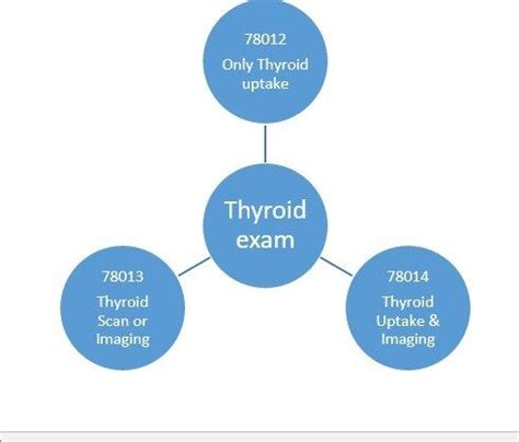 cpt codes medical code thyroid