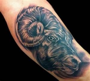 Sternzeichen Steinbock Widder : tattoos zum stichwort widder tattoo lass deine tattoos bewerten ~ Markanthonyermac.com Haus und Dekorationen