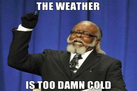 Cold Meme - memes for the cold