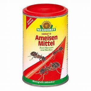 Mittel Gegen Ameisen : neudorff loxiran ameisen mittel s 100 g bauhaus ~ Buech-reservation.com Haus und Dekorationen