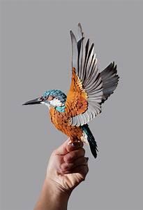 Paper Bird Art by Diana Beltran Herrera • Design Father  Bird