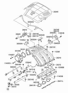 2011 Hyundai Genesis Cover Assembly - Engine
