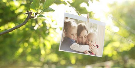 photo gallery   sunny orchard  markandtom videohive