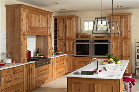 gilbert kitchen traditional kitchen minneapolis by mid continent cabinetry