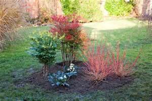 plante exterieur d hiver atlub