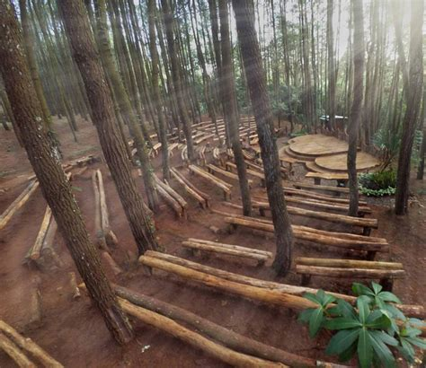 harga tiket masuk  lokasi hutan pinus asri spot foto