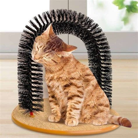 hundespielzeug selber bauen 1001 ideen in inspirierenden bildern f 252 r katzenspielzeug selber machen katzenhacks cats