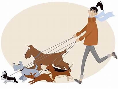 Dog Walker Walking Sitting Pet Paseo Mascota