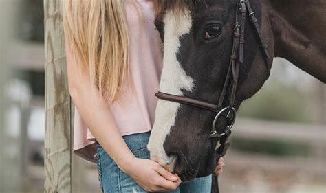 How does pet insurance work? Administering Medication To Your Horse - British Pet Insurance