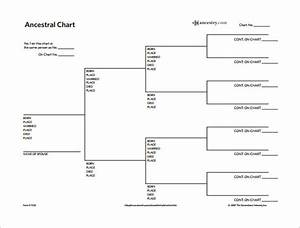 15  Family Tree Diagram Templates Pdf  Word  Excel Formats