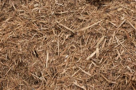How To Choose The Right Mulch For Your Garden-deerwood