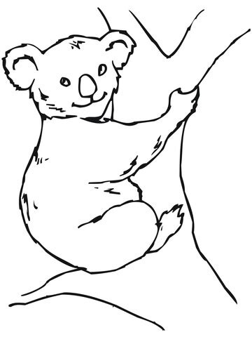 ausmalbild einfacher koala ausmalbilder kostenlos zum
