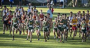 Cross Country Start   PolyCentric